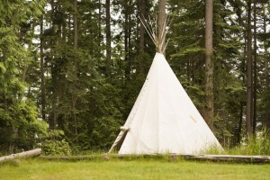 Single Teepee In Field